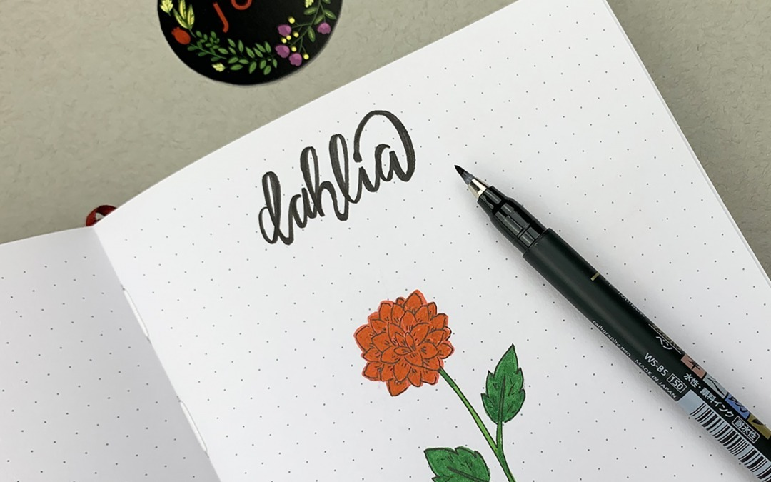 How You Can Make Perfect Dahlia Flowers in five steps